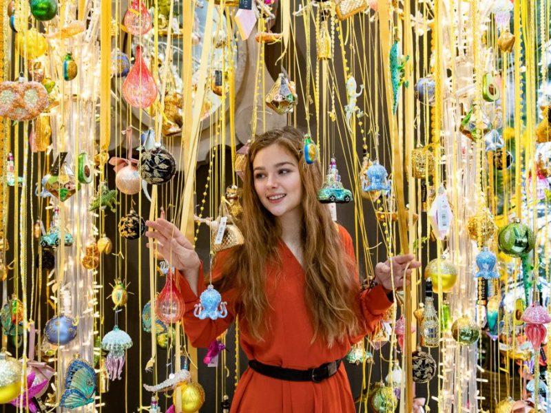 Kalėdinė paroda Christmasshow