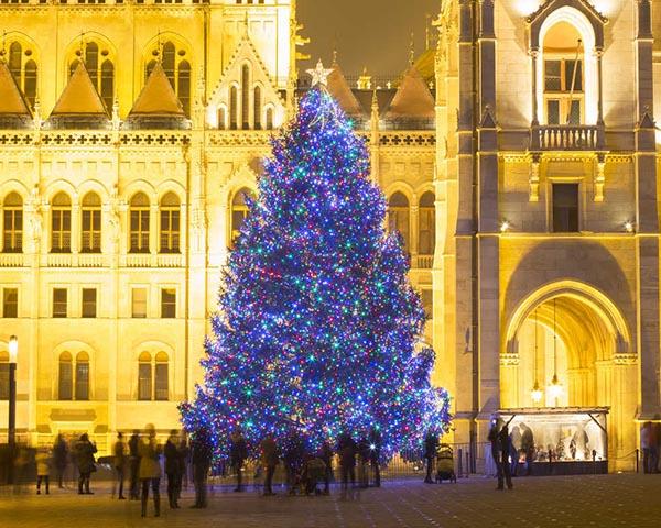 Budapešto eglė