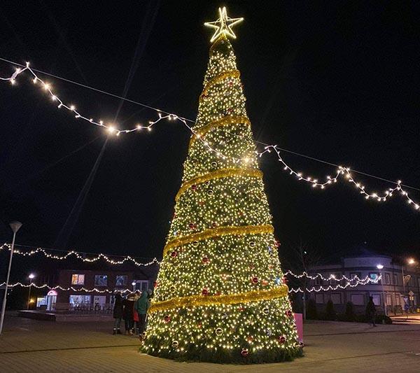 Plungės kalėdų eglė