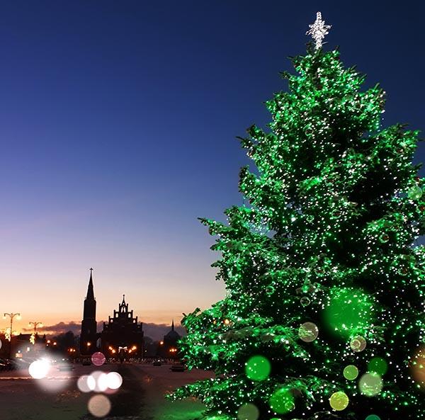Rokiškio kalėdinė eglė