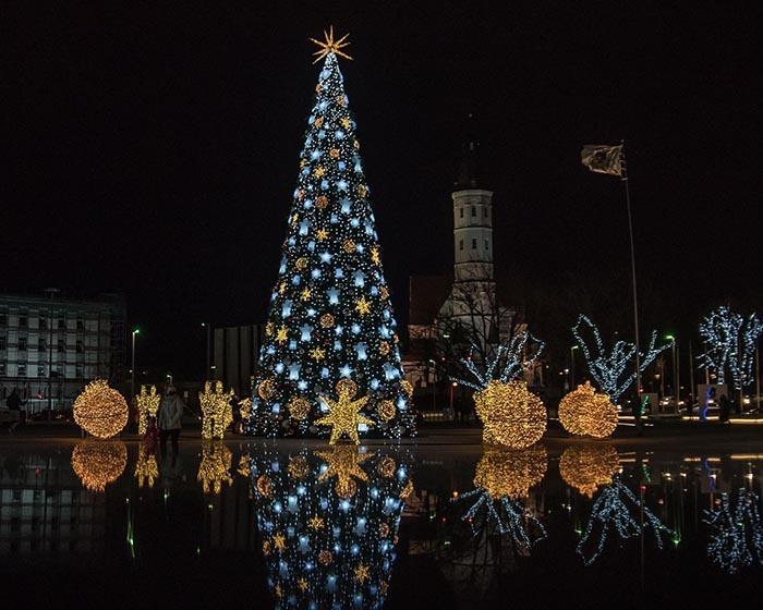 Šiaulių kalėdinė eglė
